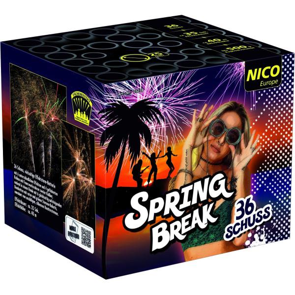 Nico Spring Break
